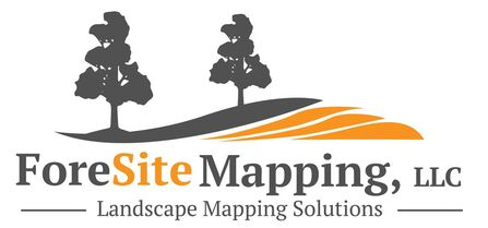 Foresite Mapping, LLC